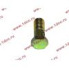 Болт пустотелый М10х1,0 (штуцер топливный) H HOWO (ХОВО) 81500070054 фото 3 Армавир