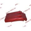 Брызговик передней оси правый H3 красный HOWO (ХОВО) WG1642230104 фото 4 Армавир